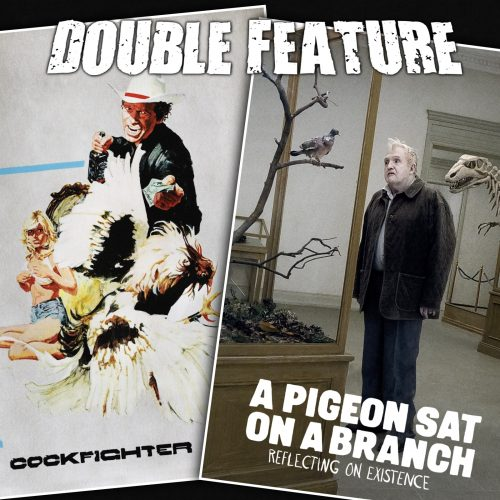 Cockfighter + A Pigeon Sat on a Branch Reflecting on Existence