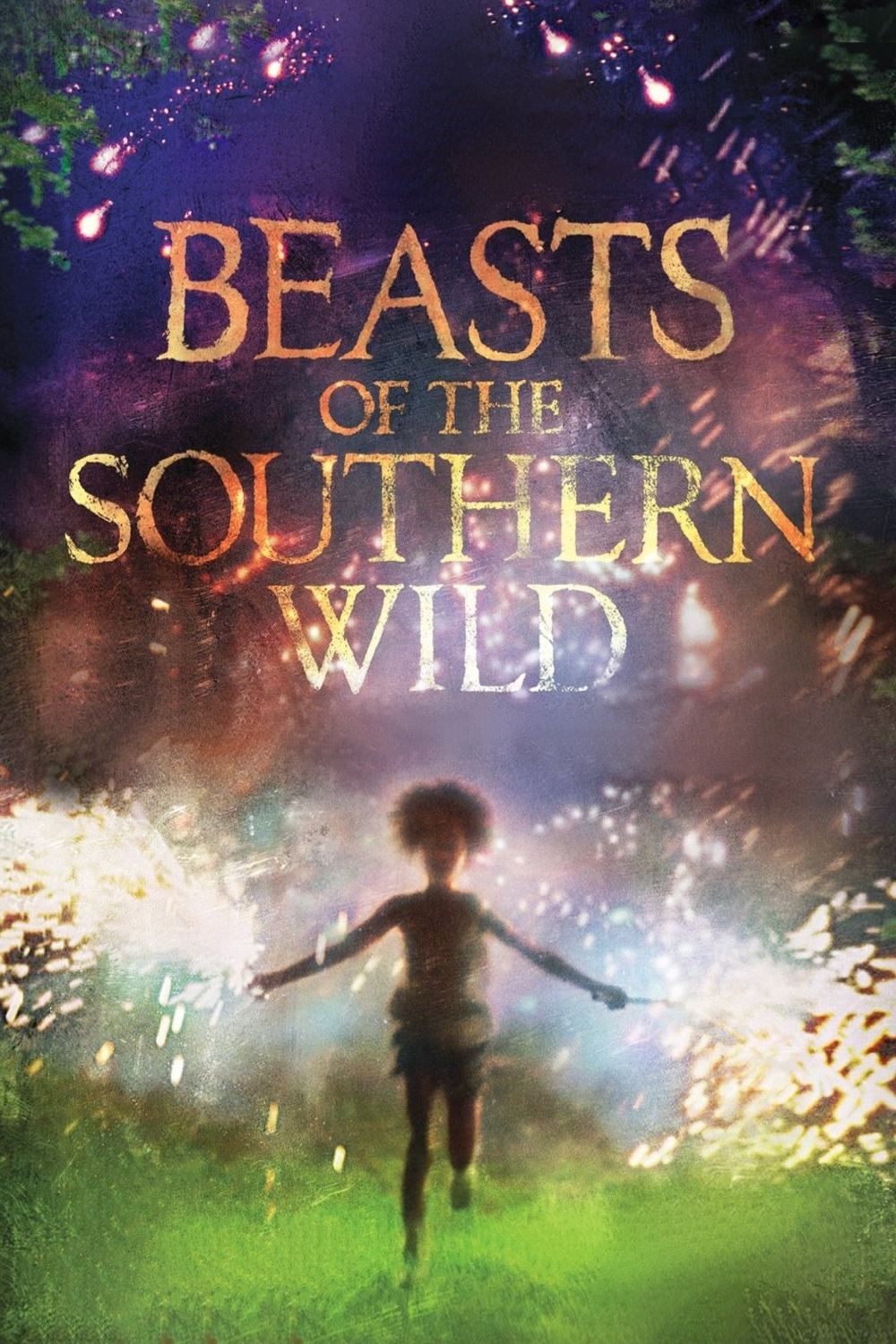 The Beast Of The Southern Wild