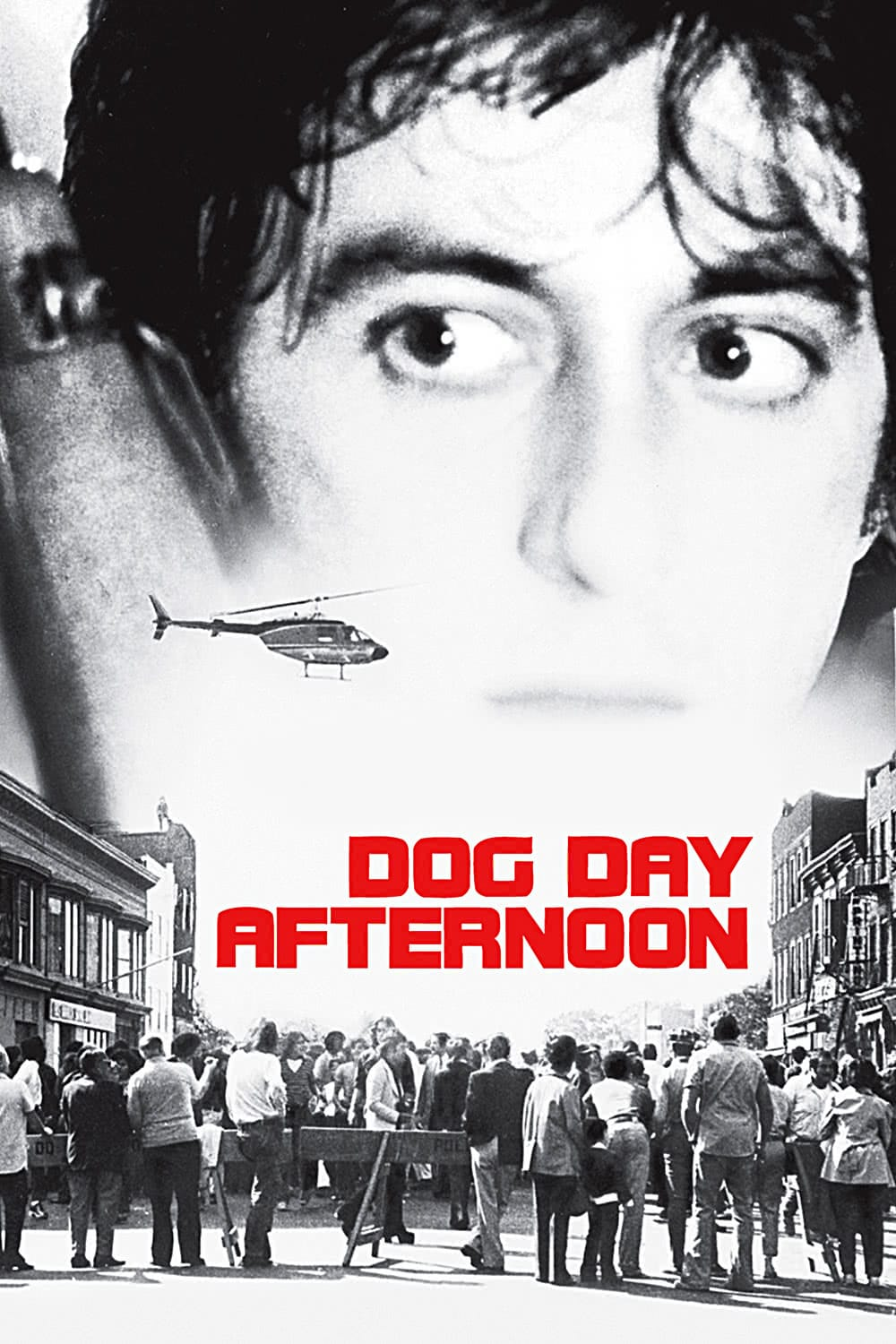 Dog Day Afternoon True Story Dog Day Afternoon