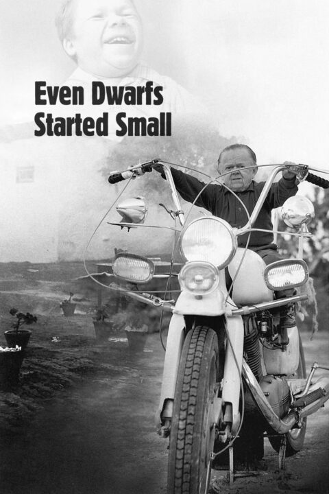 Even Dwarfs Started Small