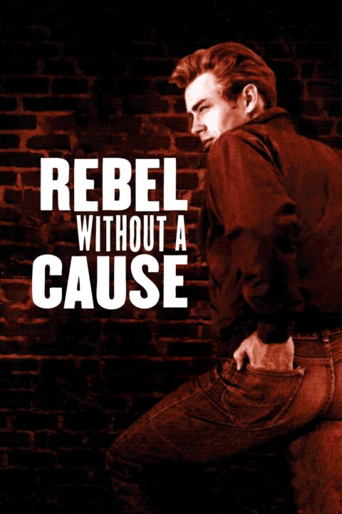 rebel for a cause