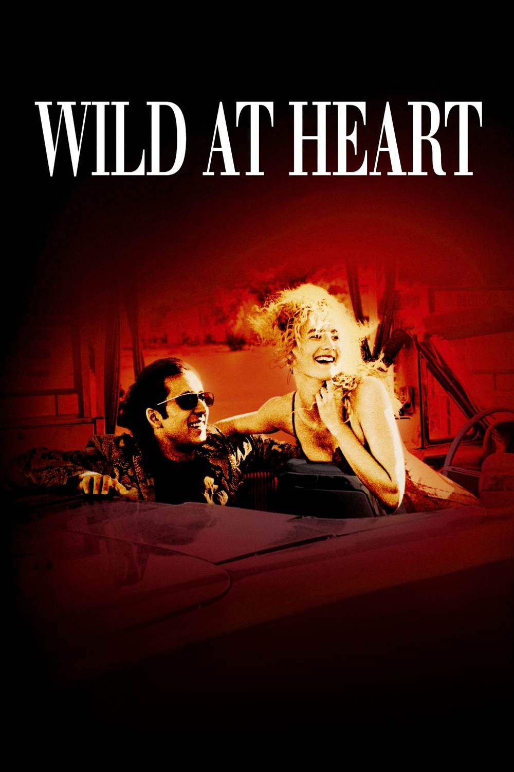 eraserhead wild at heart double feature. Black Bedroom Furniture Sets. Home Design Ideas